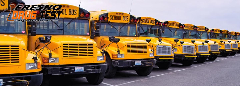 School Bus Driver Drug Testing